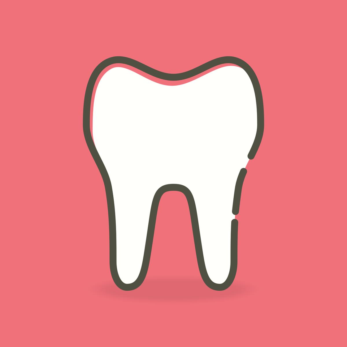 Piękne zdrowe zęby również efektowny cudny uśmiech to powód do płenego uśmiechu.